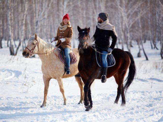 Катание на лошадях зимой