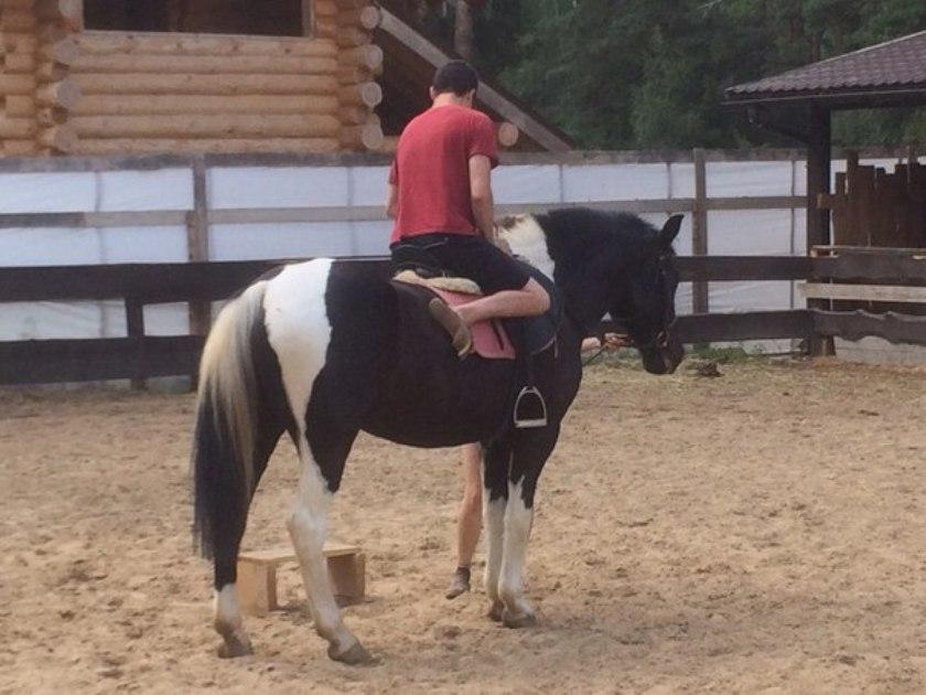 Катание на лошадях 4