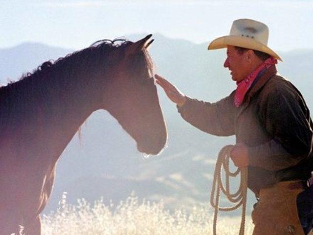 Катание на лошадях – трезвый отдых наших резидентов